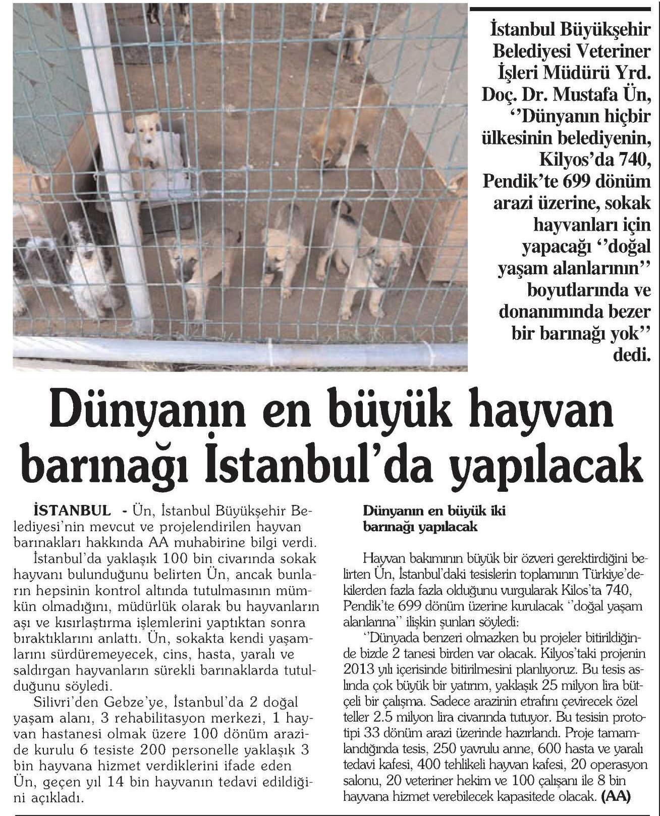 18.12.2012_yarin_ankara_barınak