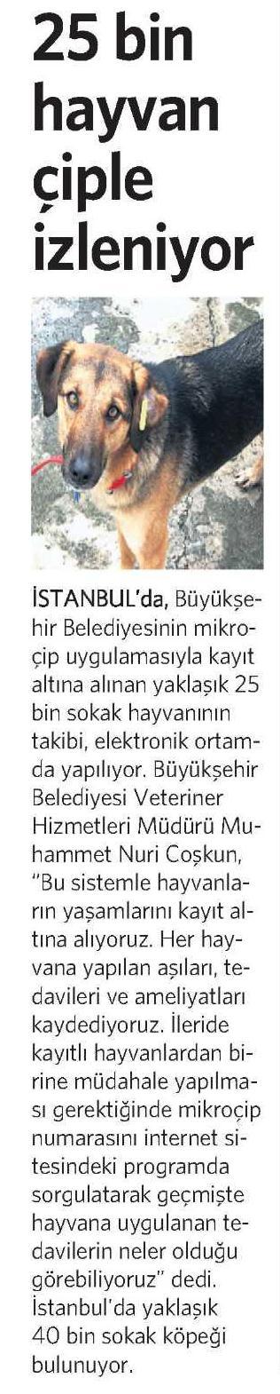 25.04.2013_oncevatan_hayvan_cip