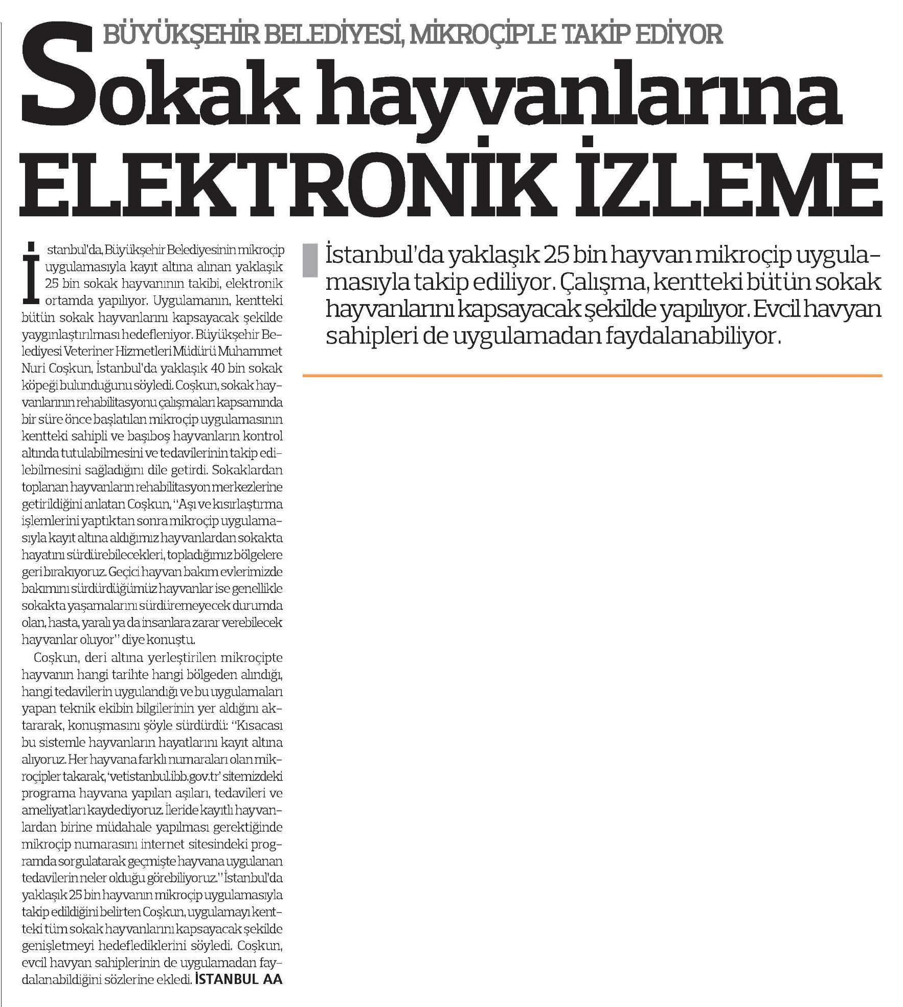 25.04.2013_turkiye_sokak_hayvan